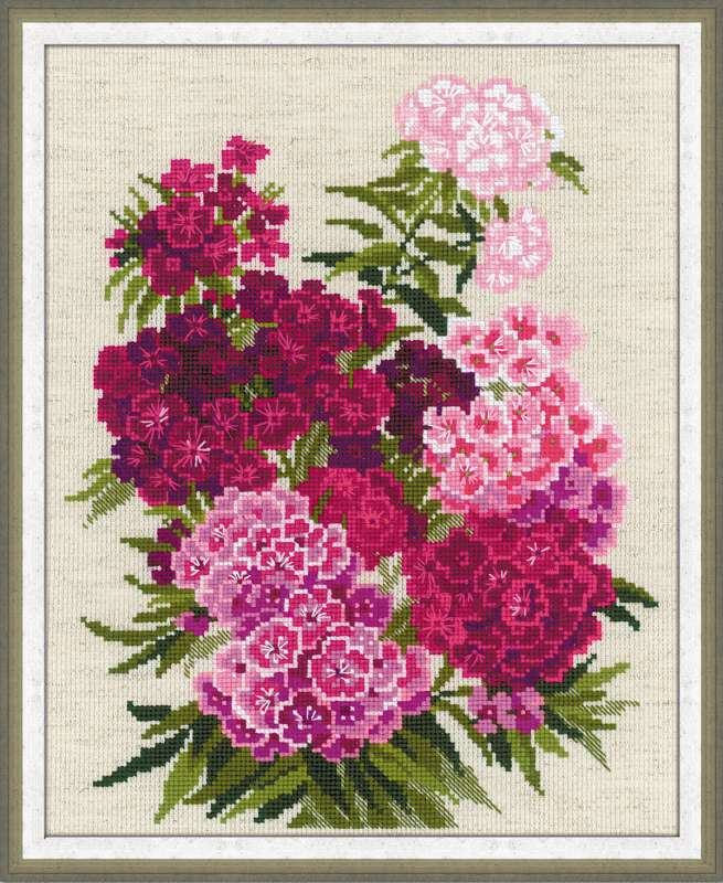 cross stitch kit sweet william